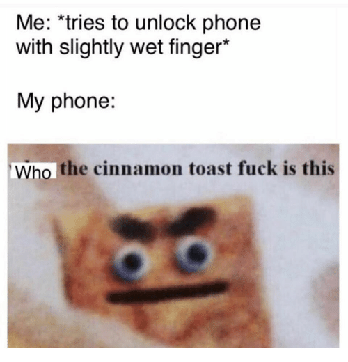 Phone, Fuck, and Toast: Me: *tries to unlock phone  with slightly wet finger*  My phone:  Who the cinnamon toast fuck is this