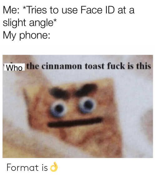 Phone, Fuck, and Toast: Me: *Tries to use Face ID at a  slight angle*  My phone:  Who the cinnamon toast fuck is this Format is👌