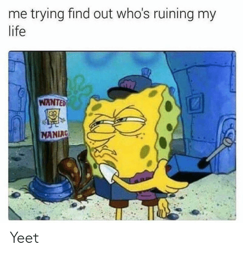 Life, SpongeBob, and Wanted: me trying find out who's ruining my  life  WANTED  MANIAC Yeet
