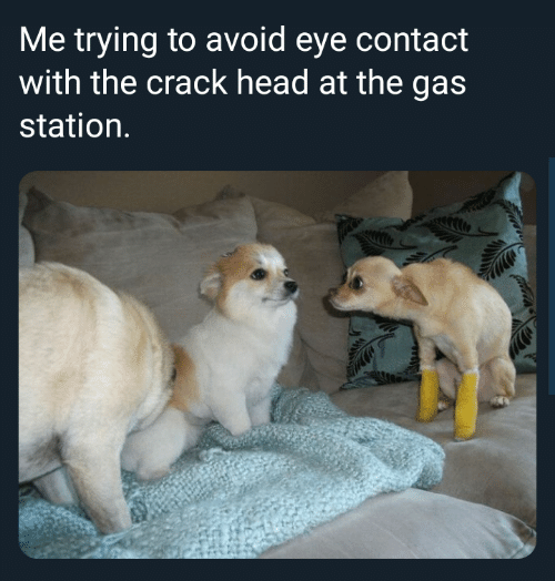 avoid-eye-contact: Me trying to avoid eye contact  with the crack head at the gas  station.
