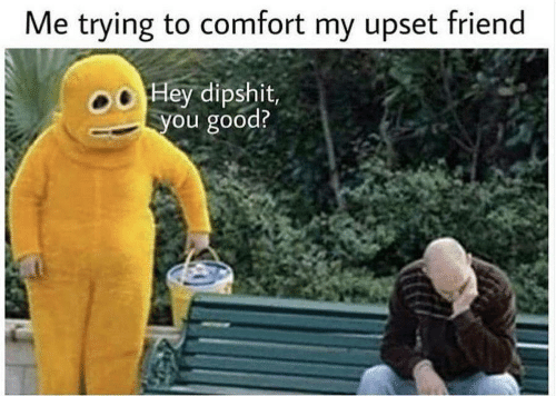 Good, Friend, and You: Me trying to comfort my upset friend  o Hey dipshit  you good?