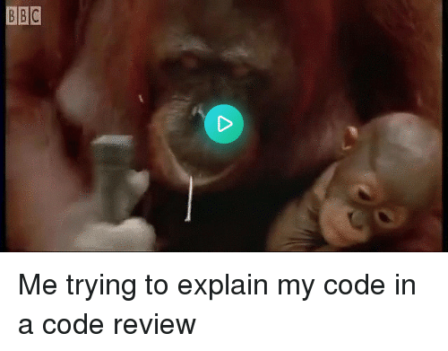 Code, Review, and Explain: Me trying to explain my code in a code review