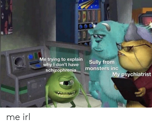 Monsters Inc, Schizophrenia, and Irl: Me trying to explain  why I don't have  schizophrenia  Sully from  monsters inc  My psychiatrist me irl