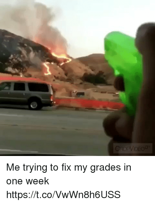 Funny, One, and Grades: Me trying to fix my grades in one week https://t.co/VwWn8h6USS