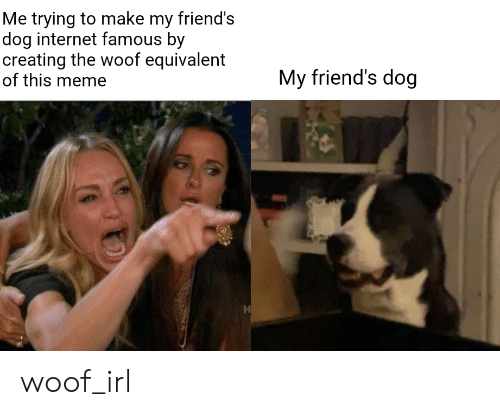 Friends, Internet, and Meme: Me trying to make my friend's  dog internet famous by  creating the woof equivalent  of this meme  My friend's dog  H woof_irl