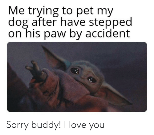 Love, Sorry, and I Love You: Me trying to pet my  dog after have stepped  on his paw by accident Sorry buddy! I love you