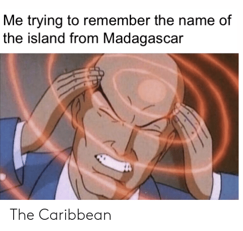 the island: Me trying to remember the name of  the island from Madagascar The Caribbean