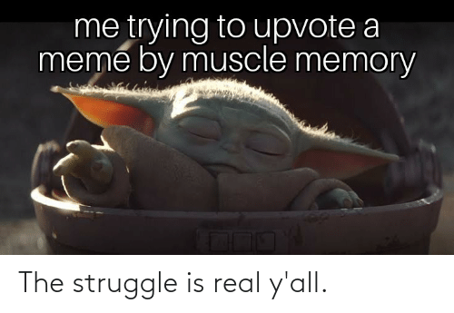 memory: me trying to upvote a  meme by muscle memory The struggle is real y'all.