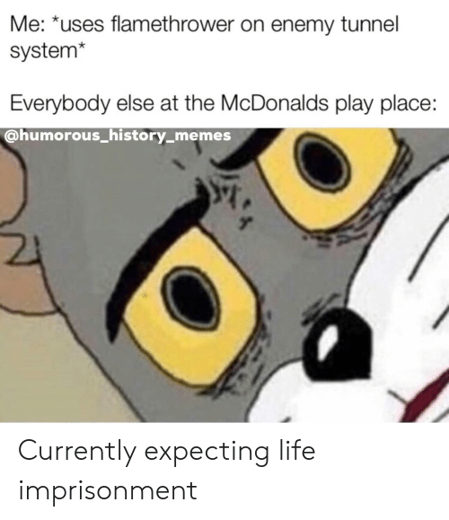 humorous: Me: *uses flamethrower on enemy tunnel  system*  Everybody else at the McDonalds play place:  @humorous_history_memes Currently expecting life imprisonment