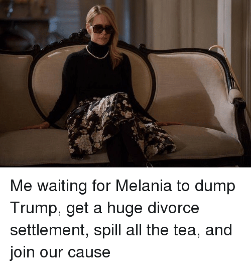 Dump Trump: Me waiting for Melania to dump Trump, get a huge divorce settlement, spill all the tea, and join our cause