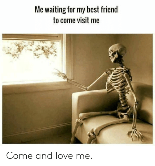 Best Friend, Dank, and Love: Me waiting for my best friend  to come visit me Come and love me.