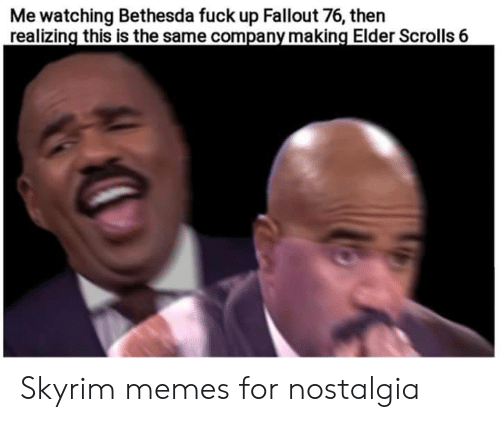 nostalgia: Me watching Bethesda fuck up Fallout 76, then  realizing this is the same company making Elder Scrolls 6 Skyrim memes for nostalgia