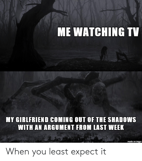 Expect: ME WATCHING TV  MY GIRLFRIEND COMING OUT OF THE SHADOWS  WITH AN ARGUMENT FROM LAST WEEK  made on imgur When you least expect it