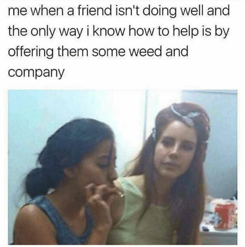 doing well: me when a friend isn't doing well and  the only way i know how to help is by  offering them some weed and  company
