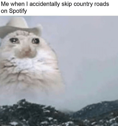 Spotify, I Accidentally, and Country: Me when I accidentally skip country roads  on Spotify