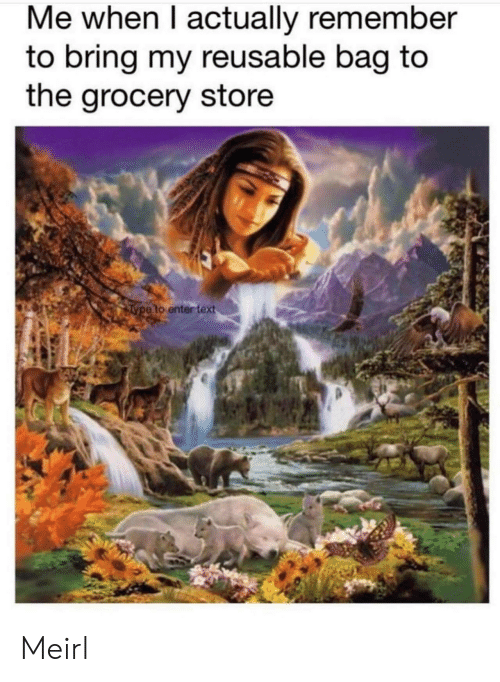 Text, MeIRL, and Remember: Me when I actually remember  to bring my reusable bag to  the grocery store  Type to enter text Meirl