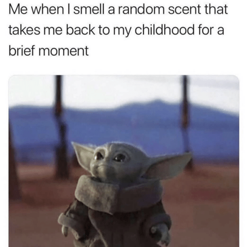 Smell: Me when I smell a random scent that  takes me back to my childhood for a  brief moment