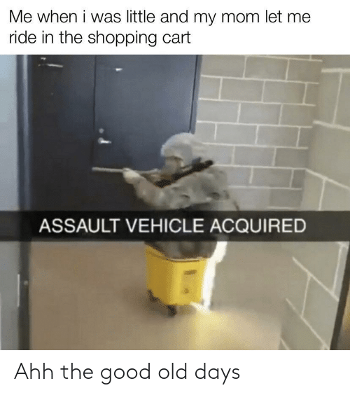 let me: Me when i was little and my mom let me  ride in the shopping cart  ASSAULT VEHICLE ACQUIRED Ahh the good old days