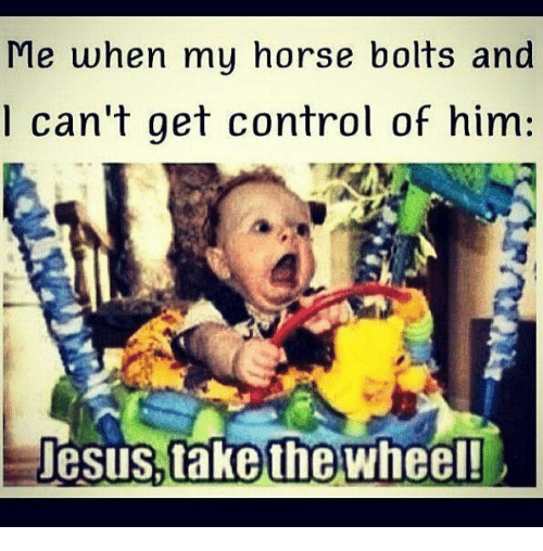 my horse: Me when my horse bolts and  l can't get control of him:  esus.take wheel!  the