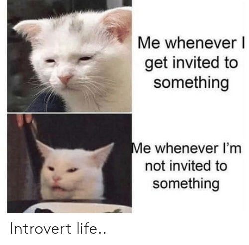 whenever: Me whenever I  get invited to  something  Me whenever I'm  not invited to  something Introvert life..