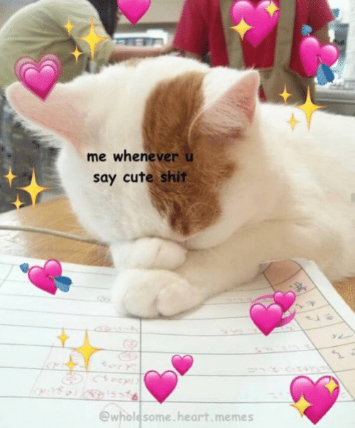 Wholesome Heart: me whenever u  say cute shit  @wholesome.heart.memes
