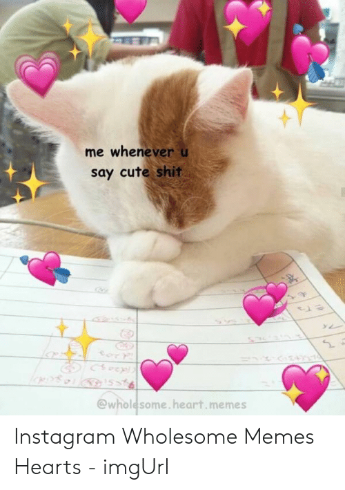 Wholesome Heart: me whenever u  say cute shit  @wholesome.heart.memes Instagram Wholesome Memes Hearts - imgUrl