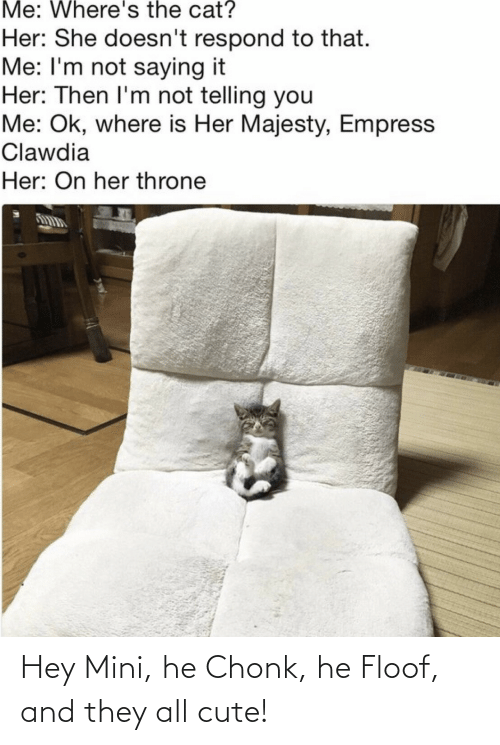 cute: Me: Where's the cat?  Her: She doesn't respond to that.  Me: I'm not saying it  Her: Then I'm not telling you  Me: Ok, where is Her Majesty, Empress  Clawdia  Her: On her throne Hey Mini, he Chonk, he Floof, and they all cute!
