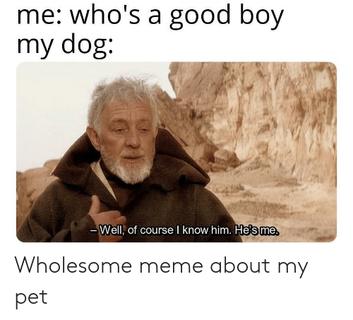 meme about: me: who's a good boy  my dog:  те.  Well, of course l know him. He's me Wholesome meme about my pet
