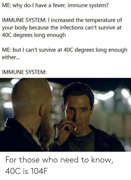 Fever, Who, and Why: ME: why do I have a fever, immune system?  IMMUNE SYSTEM: I increased the temperature of  your body because the infections can't survive at  40C degrees long enough  ME: but I can't survive at 40C degrees long enough  either...  IMMUNE SYSTEM: For those who need to know, 40C is 104F