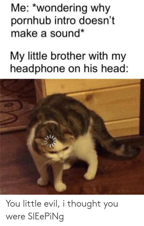 my little: Me: *wondering why  pornhub intro doesn't  make a sound*  My little brother with my  headphone on his head: You little evil, i thought you were SlEePiNg
