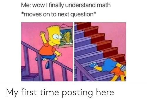 My First Time: Me: wow I finally understand math  *moves on to next question* My first time posting here