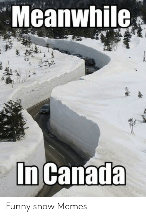 Funny Snow Memes: Meanwhile  In Canada Funny snow Memes