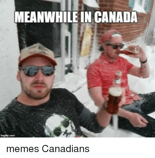 Canada Memes: MEANWHILE IN CANADA memes Canadians