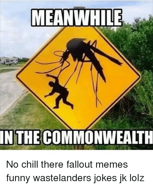 meanwhile in the commonwealth no chill there fallout memes funny 8566728 meanwhile in the commonwealth no chill there fallout memes funny