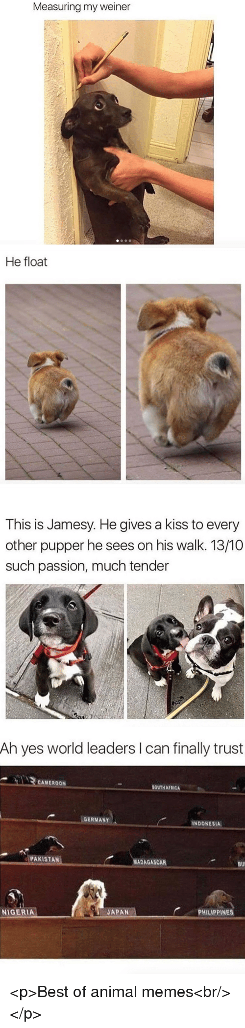 Bui: Measuring my weiner   He float   This is Jamesy. He gives a kiss to every  other pupper he sees on his walk. 13/10  such passion, much tender   Ah yes world leaders I can finally trust  CAMEROON  SOUTH AFRICA  GERMANY  INDONESIA  PAKISTAN  MADAGASCAR  BUI  PHILIPPINES  JAPAN-  NIGERIA <p>Best of animal memes<br/></p>