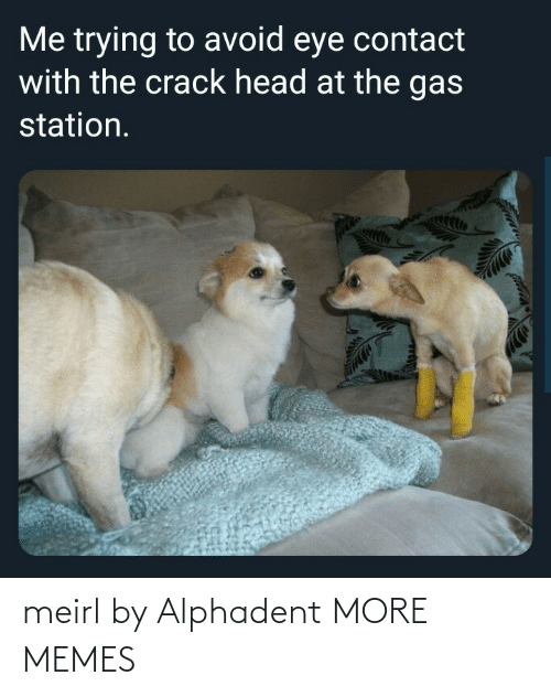 Blank: meirl by Alphadent MORE MEMES