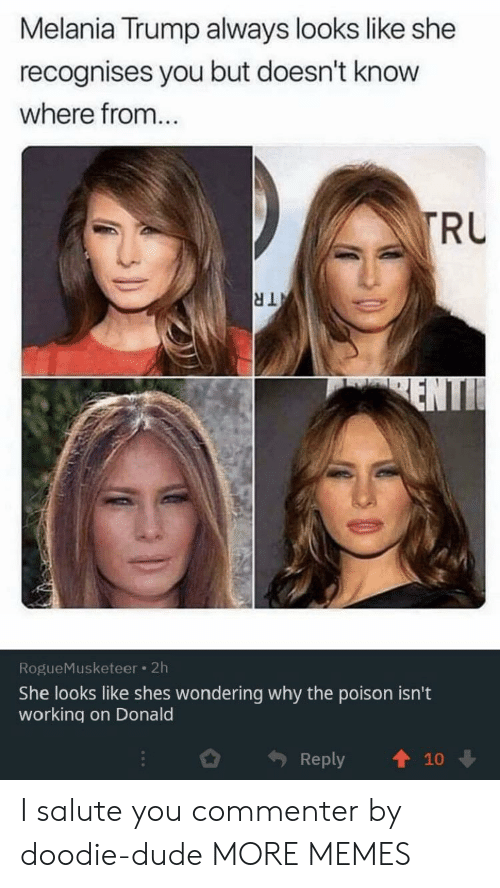 Salute: Melania Trump always looks like she  recognises you but doesn't know  where from...  TRU  TR  ENTI  RogueMusketeer 2h  She looks like shes wondering why the poison isn't  working on Donald  Reply  10 I salute you commenter by doodie-dude MORE MEMES