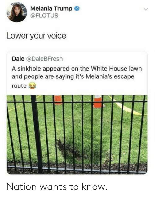 Melania: Melania Trump  @FLOTUS  Lower your voice  Dale @DaleBFresh  A sinkhole appeared on the White House lawn  and people are saying it's Melania's escape  route Nation wants to know.