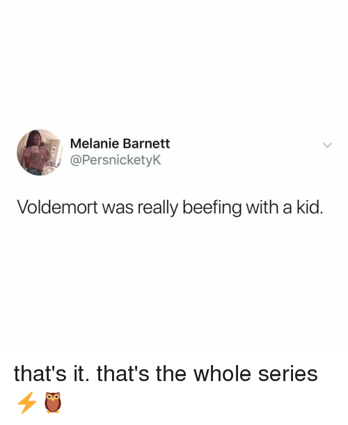 Beefing: Melanie Barnetit  @PersnicketyK  Voldemort was really beefing with a kid. that's it. that's the whole series ⚡️🦉