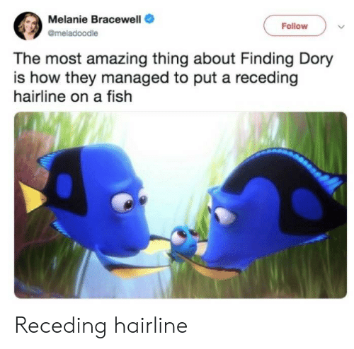 melanie: Melanie Bracewell  Follow  @meladoodle  The most amazing thing about Finding Dory  is how they managed to put a receding  hairline on a fish Receding hairline