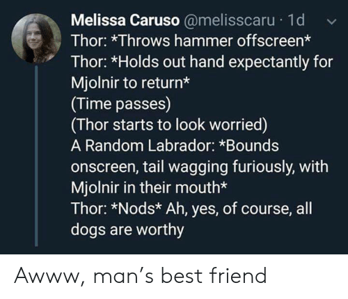 Thor: Melissa Caruso @melisscaru 1d  Thor: *Throws hammer offscreen*  Thor: *Holds out hand expectantly for  Mjolnir to return*  (Time passes)  (Thor starts to look worried)  A Random Labrador: *Bounds  onscreen, tail wagging furiously, with  Mjolnir in their mouth*  Thor: *Nods* Ah, yes, of course, all  dogs are worthy Awww, man's best friend