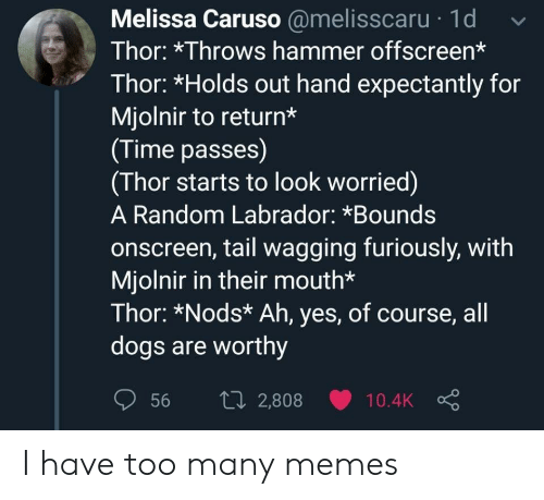 Thor: Melissa Caruso @melisscaru 1d  Thor: *Throws hammer offscreen*  Thor: *Holds out hand expectantly for  Mjolnir to return*  (Time passes)  (Thor starts to look worried)  A Random Labrador: *Bounds  onscreen, tail wagging furiously, with  Mjolnir in their mouth*  Thor: *Nods* Ah, yes, of course, all  dogs are worthy  1i2,808  56  10.4K I have too many memes