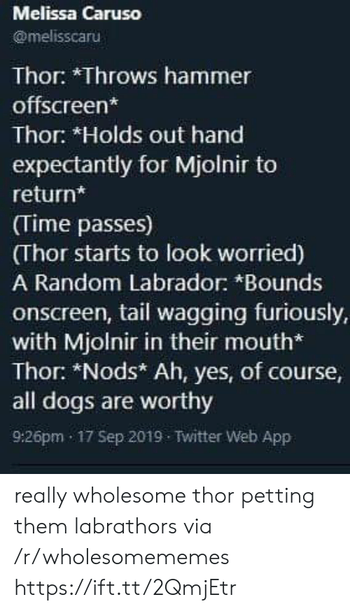 Thor: Melissa Caruso  @melisscaru  Thor: *Throws hammer  offscreen*  Thor: *Holds out hand  expectantly for Mjolnir to  return*  (Time passes)  (Thor starts to look worried)  A Random Labrador: *Bounds  onscreen, tail wagging furiously,  with Mjolnir in their mouth*  Thor: *Nods* Ah, yes, of course,  all dogs are worthy  9:26pm 17 Sep 2019 Twitter Web App really wholesome thor petting them labrathors via /r/wholesomememes https://ift.tt/2QmjEtr