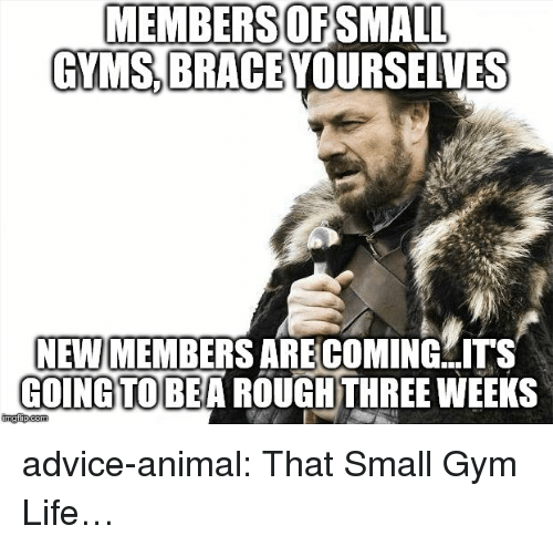 gyms: MEMBERSOFSMALL  GYMS BRACE YOURSELVES  NEW MEMBERS ARE COMING  COINGTOBEA ROUGHTHREE WEEKS  ITS advice-animal:  That Small Gym Life…
