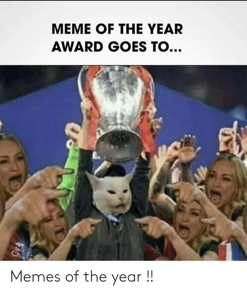 Meme, Memes, and  Year: MEME OF THE YEAR  AWARD GOES TO...  Ch Memes of the year !!