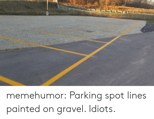Graveling: memehumor:  Parking spot lines painted on gravel. Idiots.