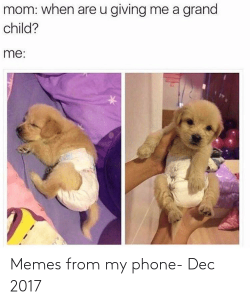 dec: Memes from my phone- Dec 2017