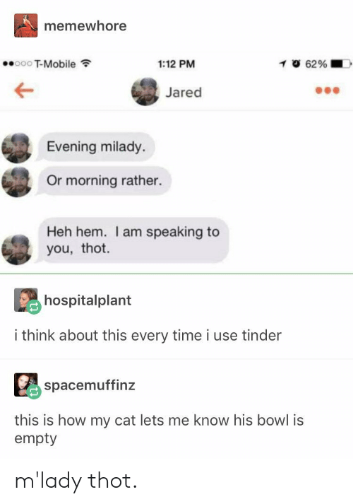 T-Mobile, Thot, and Tinder: memewhore  T-Mobile  1:12 PM  Jared  Evening milady.  Or morning rather.  Heh hem. I am speaking to  you, thot.  hospitalplant  i think about this every time i use tinder  spacemuffinz  this is how my cat lets me know his bowl is  empty m'lady thot.