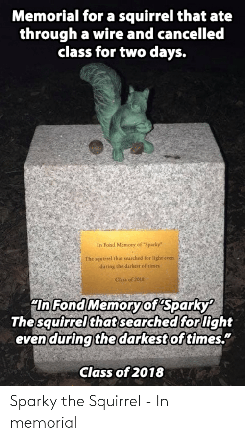 "times: Memorial for a squirrel that ate  through a wire and cancelled  class for two days.  In Fond Memory of Sparky""  The squirrel that searched for light even  during the darkest of times  Clas of 2018  ""In Fond Memoryof Sparky  The squirrel that searched for light  even during the darkest of times.""  Class of 2018 Sparky the Squirrel - In memorial"