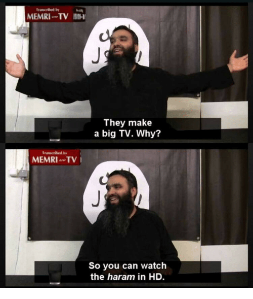Watch, Haram, and Make A: MEMRI TV 1-  They make  a big TV. Why?  Transcribed by  MEMRITV  So you can watch  the haram in HD.